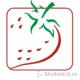 Проектирование ИС библиотеки в программе Caseberry