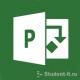 Проектный практикум (Microsoft Project)